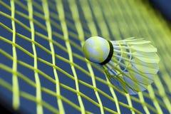 Badminton fantasy all over Stock Photos