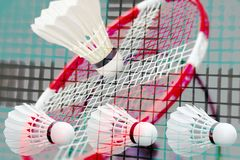 Badminton fantasy all over Stock Photography