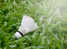 Badminton on grass. Sport game royalty free stock images