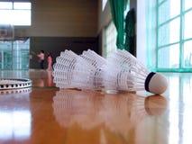 badminton inomhus Royaltyfri Bild