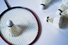 Badminton Royalty Free Stock Image