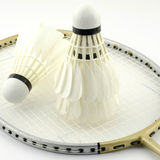Badminton isolated on white Stock Images