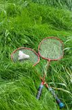 Badminton kit. On green grass Stock Image