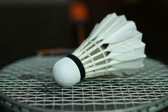 Badminton and new shuttelcock. Badminton racket and shuttlecock  on a black background Stock Photography