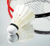 Badminton racket Stock Images