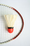 Badminton racket with ball. The badminton racket with ball Royalty Free Stock Photo
