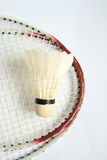 Badminton racket with ball Stock Photography