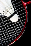 Badminton racket and birdie Stock Images