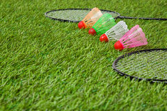 Badminton racket with color shuttlecocks close up Stock Photo