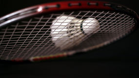 Badminton racket and feather shuttle. Badminton, a racket game played between two or four players separated in two teams Royalty Free Stock Photos