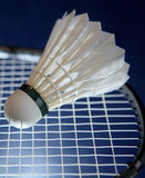 Badminton racket and shuttlecock. On its strings (color toned image Royalty Free Stock Photos
