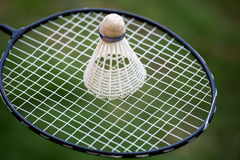 Badminton racket and shuttlecock. Badminton racket and shuttlecok shot outdoors against the background of green grass in a lawn Royalty Free Stock Photo