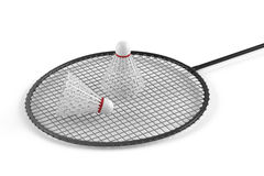 Badminton racket and shuttlecock  Stock Image