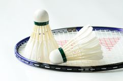 Badminton racket and shuttlecocks Stock Photos