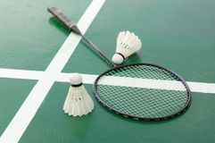 Badminton racket and shuttlecocks on court.. Badminton racket and shuttlecocks on green court Stock Photography