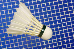 Badminton Racket and shuttlecocks Royalty Free Stock Image