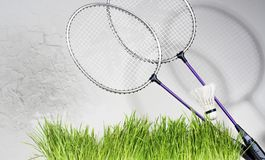 Badminton rackets against a brick wall background. Green grass Stock Photography