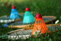Badminton rackets with colorful shuttlecocks. On green grass Stock Image