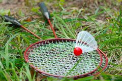 Badminton rackets and shuttlecock on green grass background. Game shuttlecock stock images