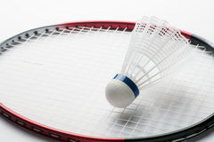 Badminton rackets and shuttlecock. White shuttlecock on badminton racket, close-up Stock Image