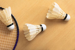 Badminton. Rackets and shuttlecocks indoor stadium Royalty Free Stock Image