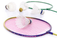 Badminton rackets and shuttlecocks Stock Image