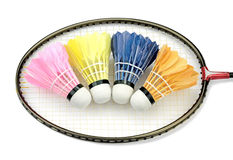 Badminton shutlecocks Stock Images