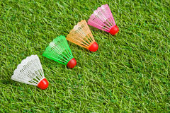 Badminton shutlecocks lying on grass close up Royalty Free Stock Photos
