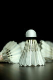 Badminton shuttelcock Royalty Free Stock Images