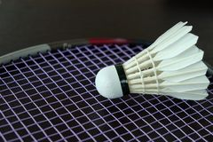 Badminton Shuttle. Stock Photo