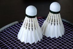Badminton Shuttle. Royalty Free Stock Images