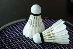 Badminton Shuttle. Royalty Free Stock Photo