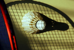 Badminton shuttlecock Stock Images