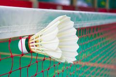 Badminton. Shuttlecock on net, badminton sports Stock Image
