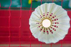 Badminton. Shuttlecock on net, badminton sports Royalty Free Stock Photos