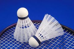 Badminton shuttlecock and racket Royalty Free Stock Image