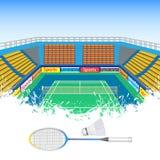 Badminton and shuttlecock Stock Image