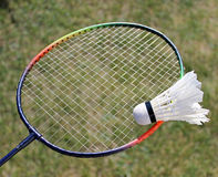 Badminton shuttlecocks on racket Stock Images