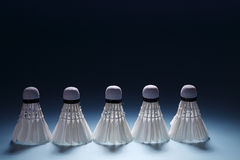Badminton shuttlecocks in row Royalty Free Stock Image