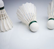 Badminton shuttlecocks on white Stock Photography