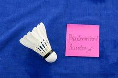 Badminton in Sonntag Lizenzfreies Stockfoto