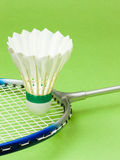 Badminton Sport Royalty Free Stock Photo