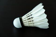 Badmintonanslutning Royaltyfri Bild