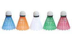 badmintonfärg fem play shuttlecocks Fotografering för Bildbyråer