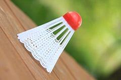 Badmintonfjäderboll för att spela badminton Royaltyfri Foto