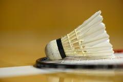 Badmintonfjäderboll på racket Royaltyfri Fotografi
