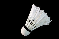 Badmintonpiepmatz Lizenzfreies Stockfoto