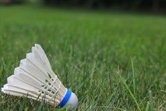 Badmintonpippi eller fjäderboll Fotografering för Bildbyråer
