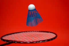 badmintonsportar Royaltyfri Foto