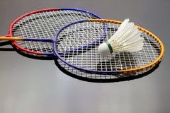 Badmintonuppsättning Royaltyfri Fotografi